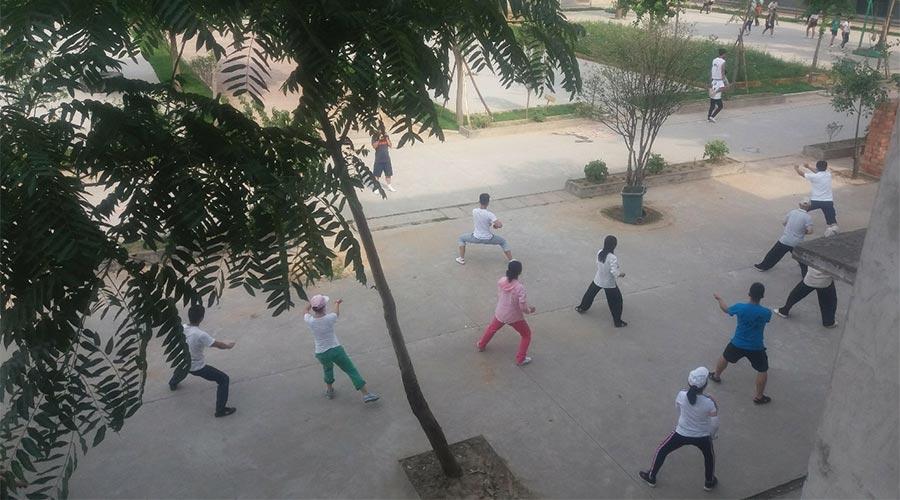 kitajska-taiji-skupina-odraslih-vadba